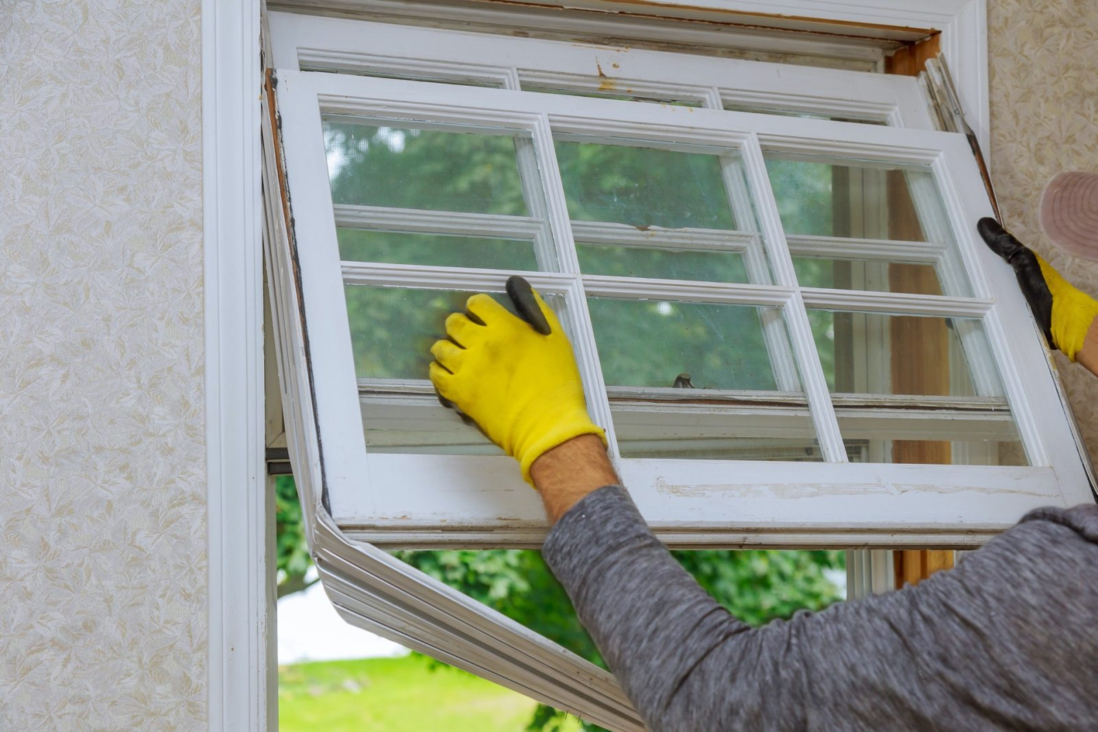 Windows Repair & Services Workers preparing to master removes old wooden windows in home renovation, energy efficiency concept